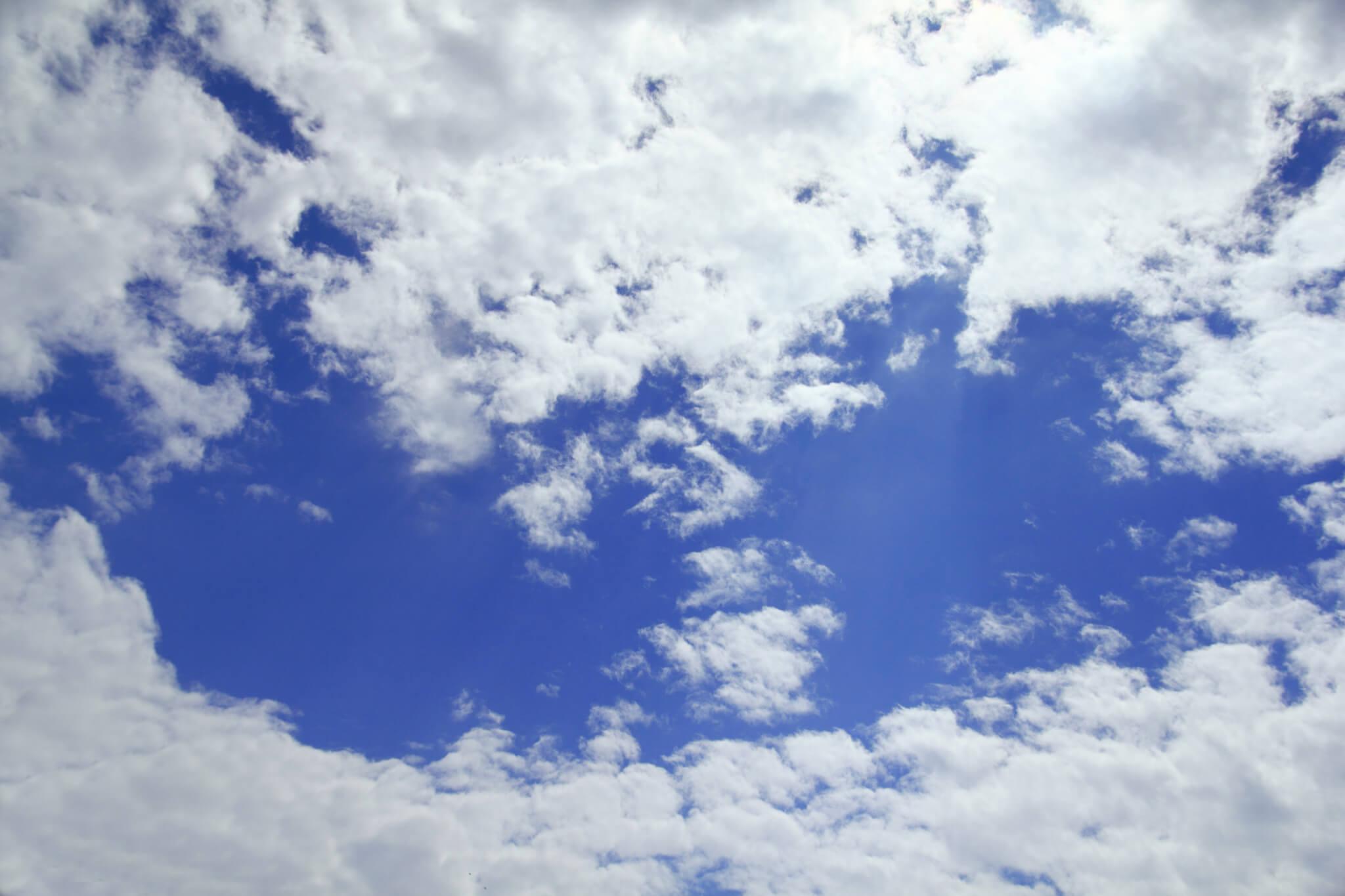 Adobe cloud licensing